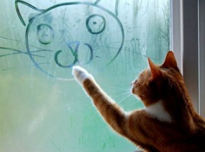Кошка поздравляет!