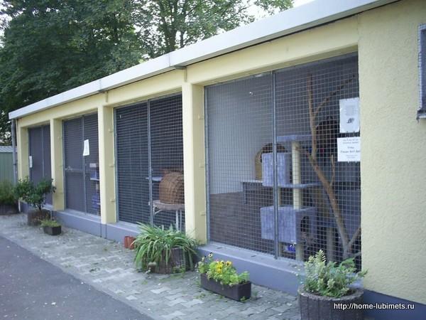 Приюты для животных в Германии