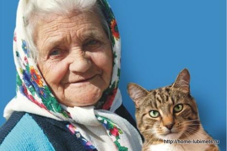 Лапки и бабка