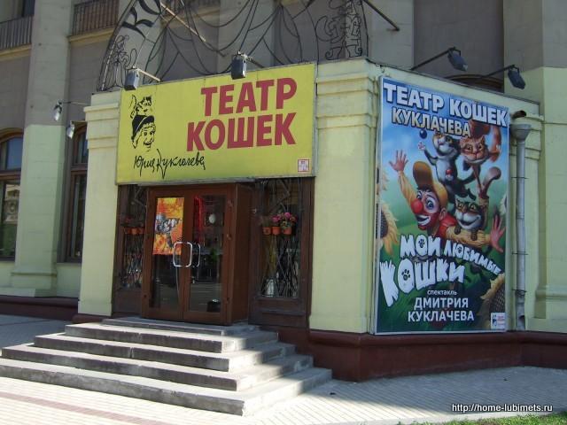 Кошки Юрия Куклачёва8