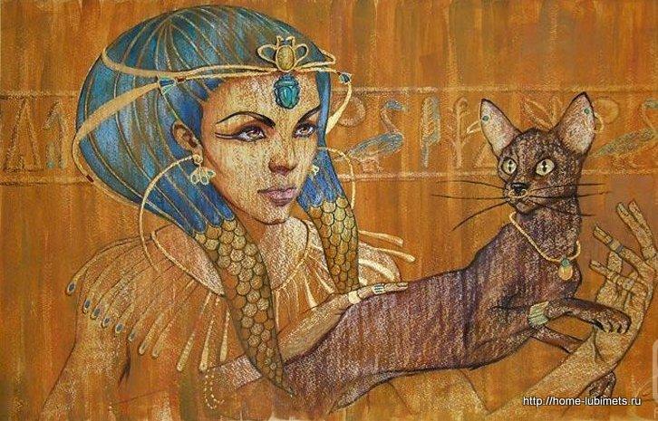 Кошки Галлы Фаттах