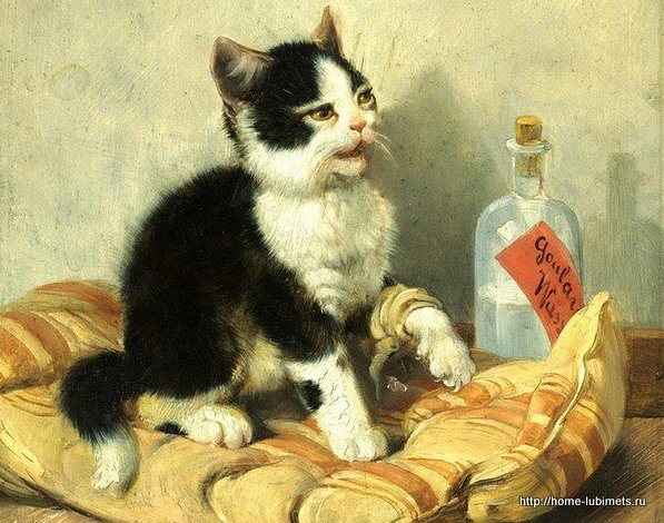 Кошки Джулиуса Адома