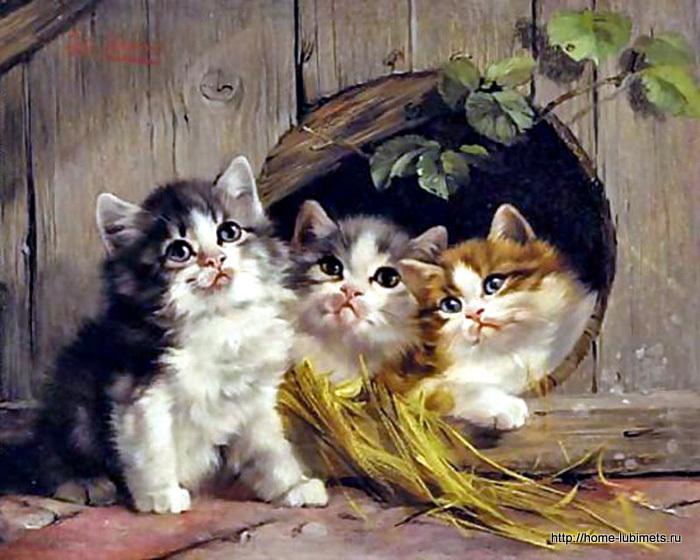 Кошки в искусстве