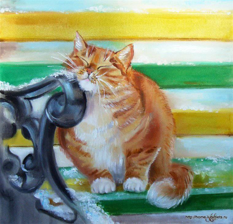 Кошки Логиновой Аннет