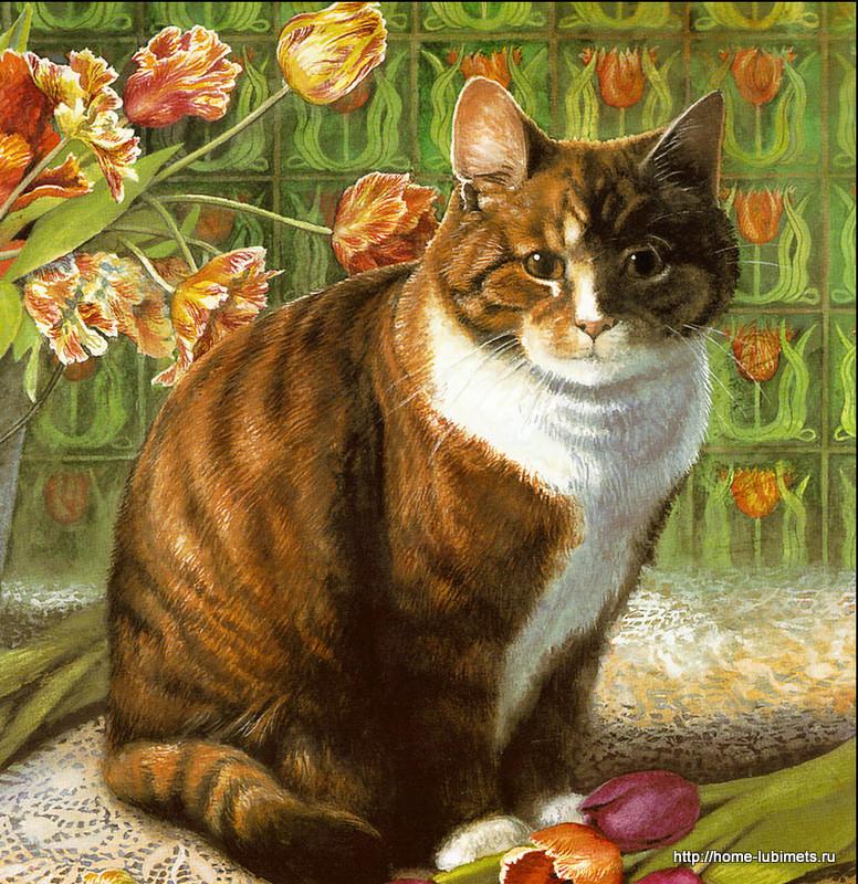 Крисси Снеллинг. Кошка